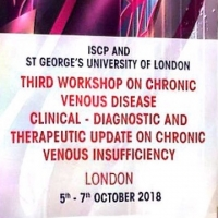 Workshop on chronic venous disease in London